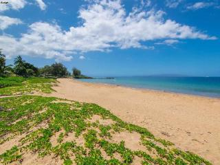 Paradise Found in the heart of Kihei - Kihei vacation rentals