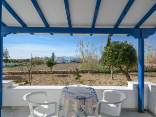 Nice 3 bedroom Agia Anna Private room with Stove - Agia Anna vacation rentals