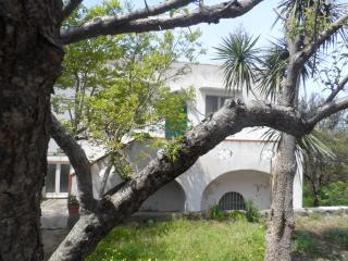 Nice Villa with A/C and Satellite Or Cable TV - Anacapri vacation rentals