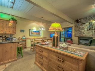 Storm Meadows A113 - Steamboat Springs vacation rentals