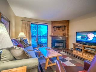 Nice 2 bedroom House in Steamboat Springs with Shared Outdoor Pool - Steamboat Springs vacation rentals
