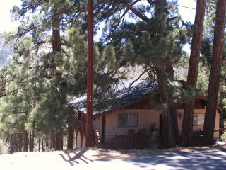 NEARLY HEAVEN: Bear Mnt Ski Views!! - Wifi-Cable - Big Bear Lake vacation rentals