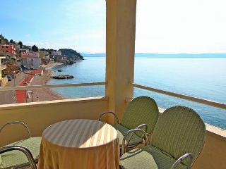TH03463 Apartments Vlasta / A1 BLUE One BedroomDrašnice - Drasnice vacation rentals