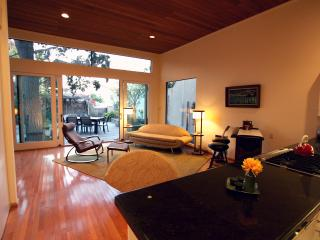 Modern Designer Architectural Spa Views - Pacific Beach vacation rentals