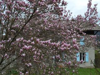 Gab's HouseVallee au coeur de la vallée de l'Arve - Thyez vacation rentals