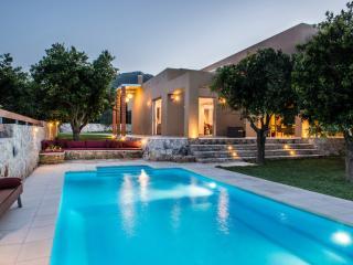 Modern villa, pool, grass and orange trees garden - Platanias vacation rentals