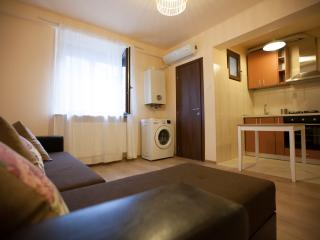 1 bedroom Apartment with Internet Access in Iasi - Iasi vacation rentals