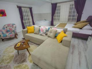 Urgup Suites - 2-bedroom Serviced Apartment - Urgup vacation rentals