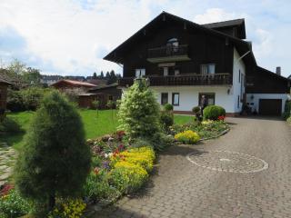 Landhaus mit 3  **** Ferienwohnungen - Steinau an der Strasse vacation rentals