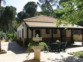 Beautiful 4 bedroom House in Las Jaras - Las Jaras vacation rentals