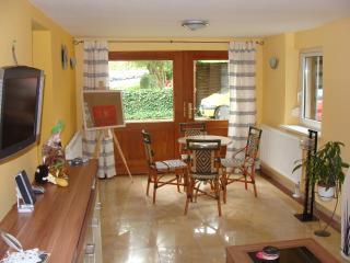 Romantic 1 bedroom Condo in Schwerin - Schwerin vacation rentals