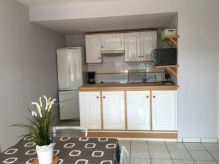Bright 1 bedroom Condo in Saint-Jean-de-Luz - Saint-Jean-de-Luz vacation rentals