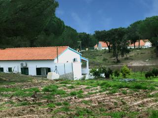Nice Farmhouse Barn with Internet Access and A/C - Montargil vacation rentals