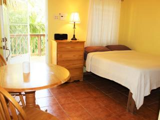 Studio 1-cozy and easy on budget - Rincon vacation rentals