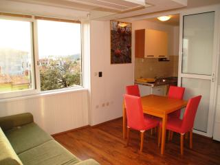 Wonderful 1 bedroom Condo in Mali Losinj - Mali Losinj vacation rentals
