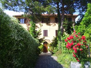 BED & BREAKFAST LA CASA DEGLI ARANCI 1 - Massa vacation rentals