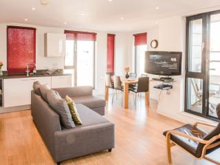 Large Two Bedroom Two Bathroom Apartment City - London vacation rentals