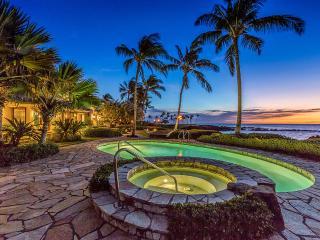 Beautiful Villa with Television and DVD Player - Mauna Lani vacation rentals