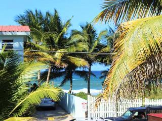 Kasa Maui(Ocean View Apt) Across from Sandy Beach - Rincon vacation rentals