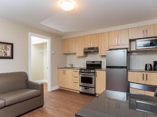 Les Appartements du Fleuve - Riverfront Apartment - Brossard vacation rentals