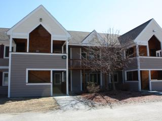 Perfect Condo with Internet Access and A/C - Lincoln vacation rentals