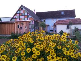 Vacation House in Bundorf - central, active, comfortable (# 9211) - Friesenhausen vacation rentals