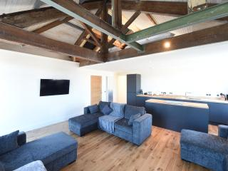 Stunning Penthouse Slps 20 (38 A4) - Manchester vacation rentals