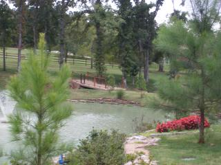 4,000 sqft. Log Cabin 10 min. from Downtown Tulsa! - Sand Springs vacation rentals