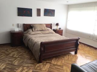 Spacious 3 bedroom apartment Calle 100 - Bogota vacation rentals