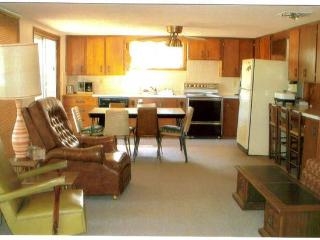 Furnished cabin with dock-available - Stover vacation rentals