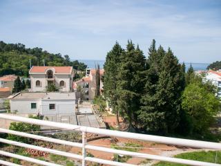 Apatrment NICE 5 - Petrovac vacation rentals