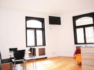 ☆☆☆Friendly apartment in  centre Prague - Prague vacation rentals