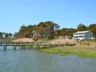 Gorgeous 3 bedroom Vacation Rental in Chincoteague Island - Chincoteague Island vacation rentals
