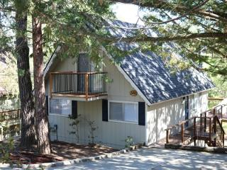 Pine Mountain Getaway~walk to beach, kid friendly - Groveland vacation rentals