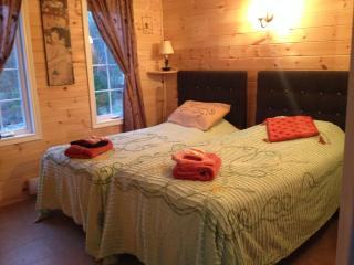 Circa 1894 - Spa Room, free access to facilities - Lanark vacation rentals