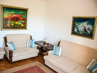 Apartments Krš Medinski 3 - Petrovac vacation rentals