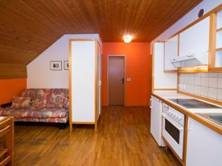 Apartment ENCIJAN 5 (Apartment House Ob Savici) - Bohinjsko Jezero vacation rentals