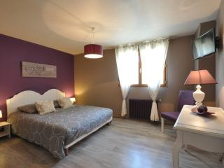2 bedroom Condo with Internet Access in Seine-et-Marne - Seine-et-Marne vacation rentals