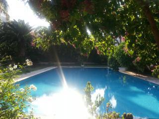 GLICINE - Palermo vacation rentals