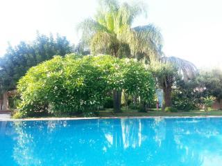 casa vacanza orange - Palermo vacation rentals
