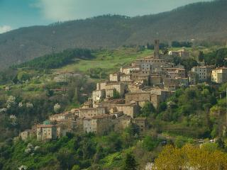 2 bedroom Tower with Internet Access in Castelnuovo di Val di Cecina - Castelnuovo di Val di Cecina vacation rentals