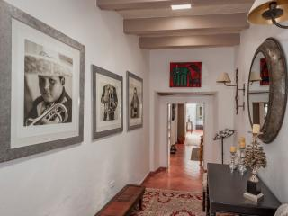 Lovely 2 bedroom San Miguel de Allende House with Internet Access - San Miguel de Allende vacation rentals