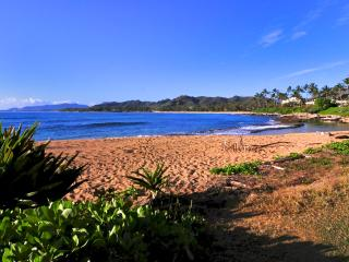 Beachfront, steps to our beach, two bedrooms , one full bath, great for families - Kapaa vacation rentals