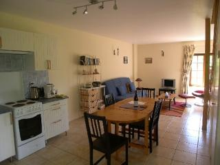 1 bedroom House with Internet Access in Saint-Sernin-du-Plain - Saint-Sernin-du-Plain vacation rentals