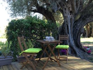 Nice Bed and Breakfast with Internet Access and Housekeeping Included - Sanary-sur-Mer vacation rentals