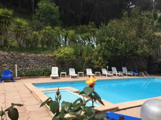Provence cote azur sea private villa & pool 18p - Carqueiranne vacation rentals