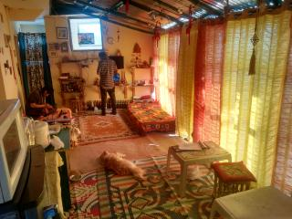 ANANDAM HOME STAY ROOM 3 - McLeod Ganj vacation rentals