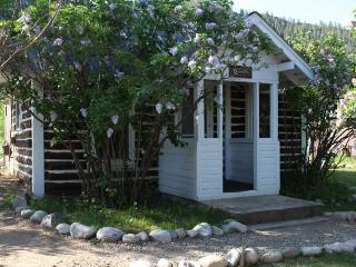 Lovely Little 1 BR Log Cabin at Three Rivers Resort in Almont (#9) - Almont vacation rentals