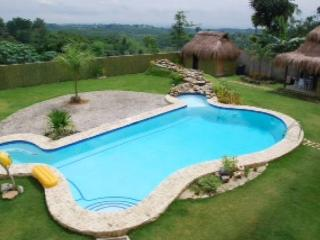 Beautiful overlooking mansion with pool - Cebu City vacation rentals
