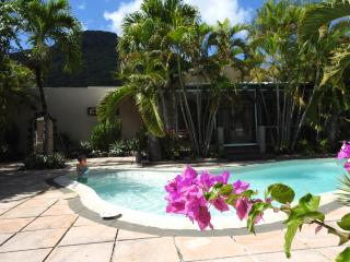 Nice Villa with Internet Access and Dishwasher - Riviere Noire vacation rentals